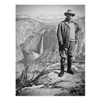 Teddy Roosevelt Glacier Point Yosemite Valley CA Postcard