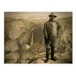 Teddy Roosevelt Glacier Point Yosemite Valley Postcard
