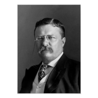 Teddy Roosevelt Portrait - 1904 Poster