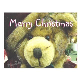 Teddybear MC-customize Postcard