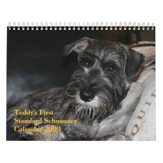 Teddy's First Standard Schnauzer Calendar 2009