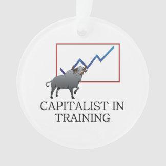 TEE Capitalist in Training
