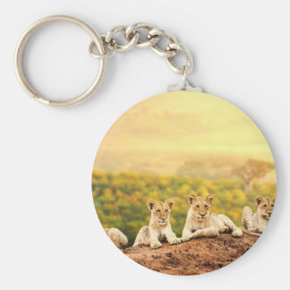 Teenage Lions Watch From A Hill Basic Round Button Keychain