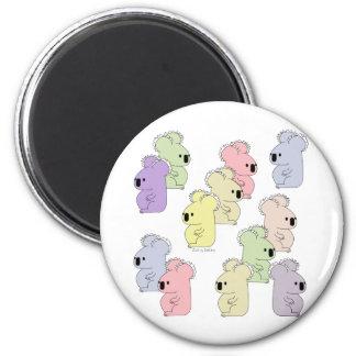 teeny koala multi magnet