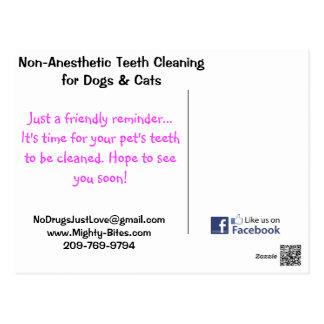 Teeth Cleaning Reminder Postcard