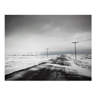 Telephone poles in snow covered field postcard