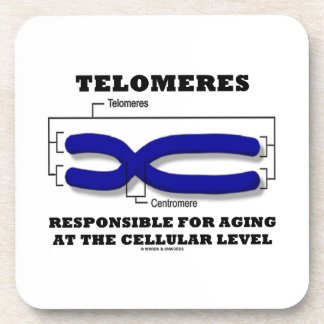 Telomeres Responsible For Aging At Cellular Level Drink Coasters