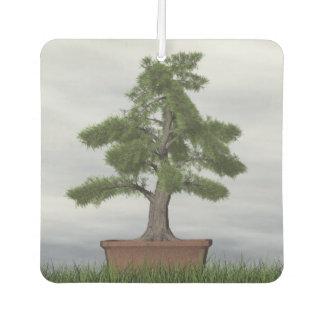 Temple juniper tree bonsai - 3D render Car Air Freshener