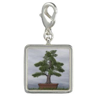 Temple juniper tree bonsai - 3D render Charms