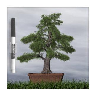 Temple juniper tree bonsai - 3D render Dry Erase Board