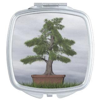 Temple juniper tree bonsai - 3D render Makeup Mirrors
