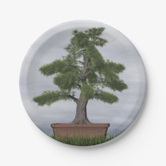 Temple juniper tree bonsai - 3D render Paper Plate