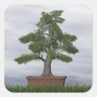 Temple juniper tree bonsai - 3D render Square Sticker