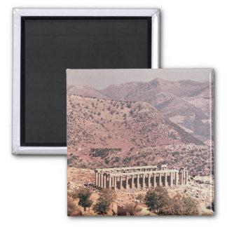 Temple of Apollo Epikourios, c.450-20 BC Magnet