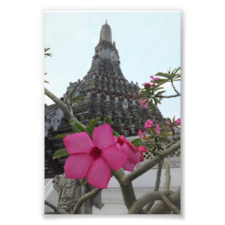 Temple of the Dawn Flower Photo Print