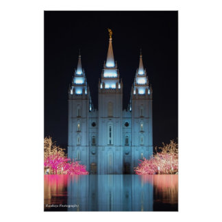 Temple Reflected Poster