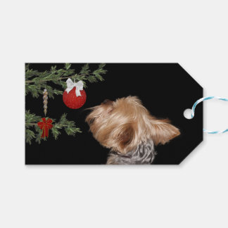 Tempted Yorkie Christmas Gift Tags