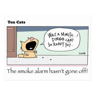 Ten Cats - b -  Chesney - by  grahamharrop Postcard