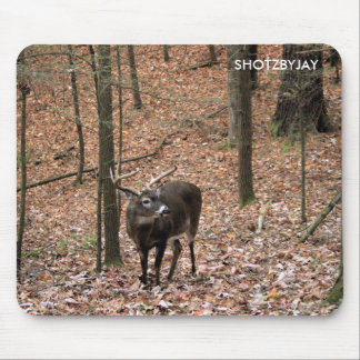 Ten Point Buck Mouse Pad