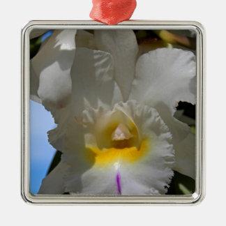 Tenacious Miss Silver-Colored Square Ornament