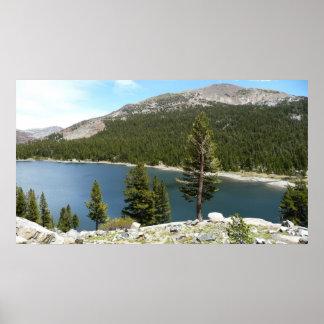 Tenaya Lake in Yosemite National Park Poster