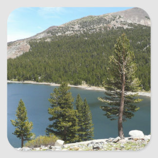 Tenaya Lake in Yosemite National Park Square Sticker