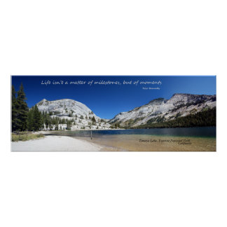 Tenaya Lake poster
