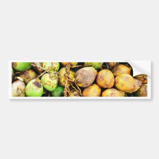tender coconuts bumper sticker