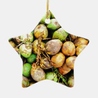 tender coconuts ceramic star ornament