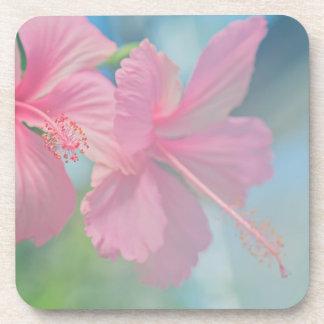 Tender macro shoot of pink hibiscus flowers coaster