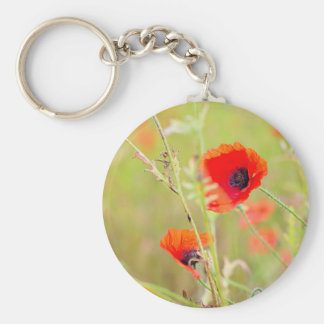 Tender shot of red poppies on the field keychain