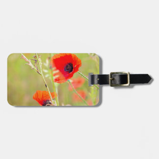 Tender shot of red poppies on the field luggage tag