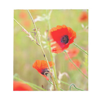 Tender shot of red poppies on the field notepad