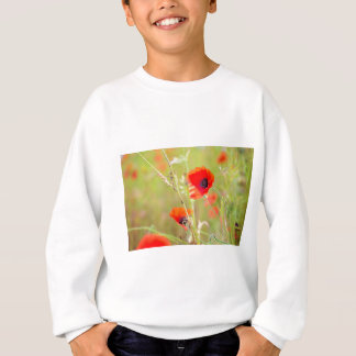 Tender shot of red poppies on the field sweatshirt