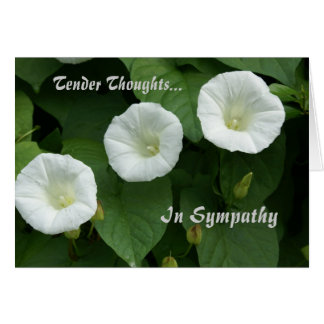 Tender Thoughts Condolence Card