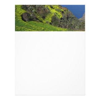Tenerife 09.jpg customized letterhead