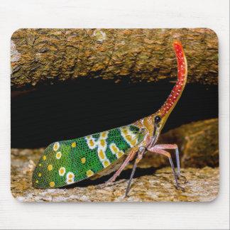 tenku ゙ hi ゙ wahako ゙ romo mouse pad