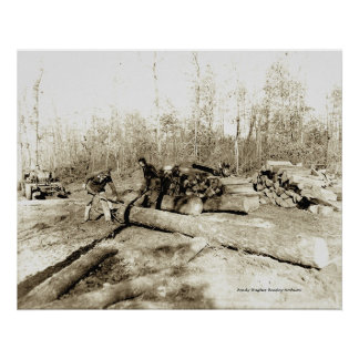 Tennessee Lumberjacks Poster
