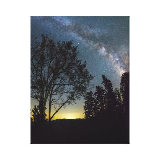 Tennessee Milky Way Canvas Print