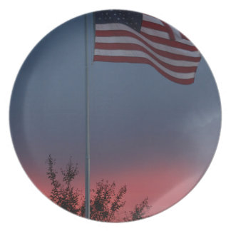 Tennessee Sunset and Flag Plate