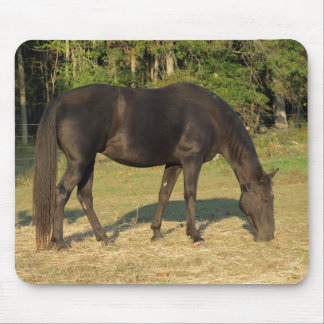 Tennessee Walking Horse Mare mouse pad