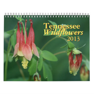 Tennessee Wildflowers 2013 Calendar