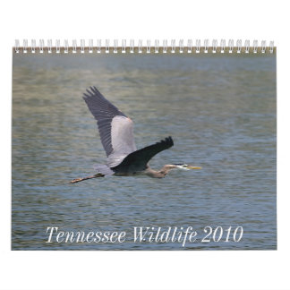Tennessee Wildlife 2010 Wall Calendars