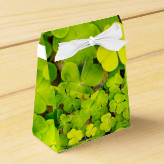 Tent Favor box - luck clover