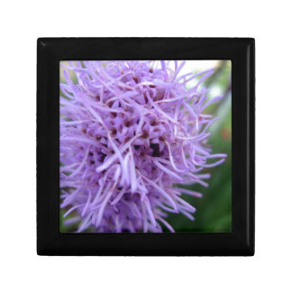 Tentacle Spider Violet Flower Gift Box