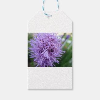 Tentacle Spider Violet Flower Gift Tags