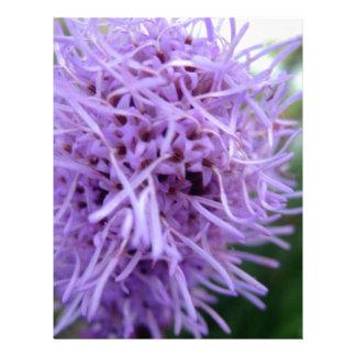 Tentacle Spider Violet Flower Letterhead