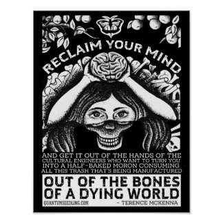 Terence Mckenna Quote  - Reclaim Your Mind Poster