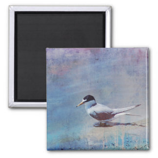 Tern by the Shore Magnet