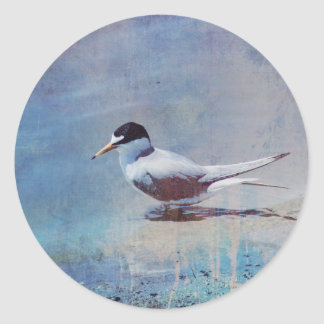 Tern by the Shore Stickers